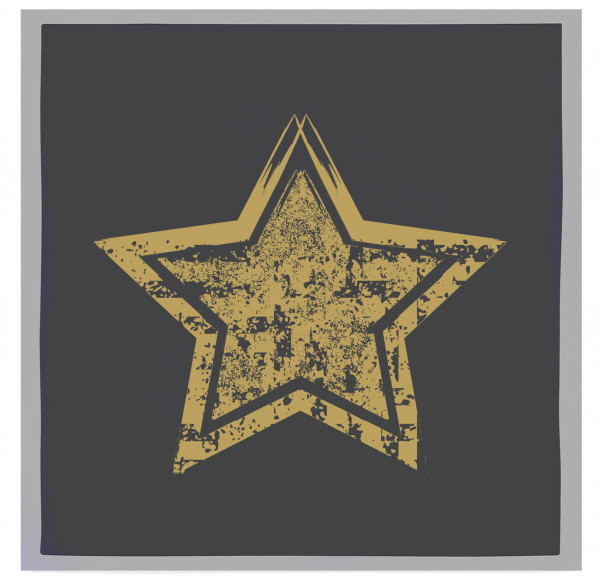 Servietten-Set (2 Stk.) grau, STERN VINTAGE, gold